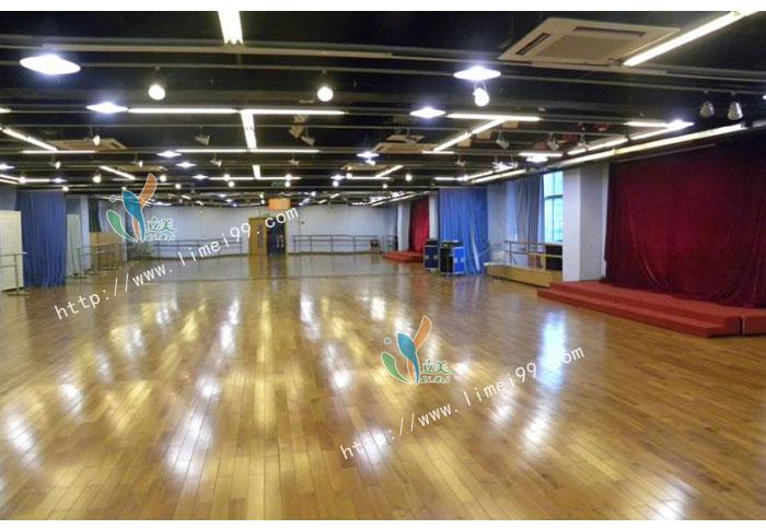 舞蹈实木地板